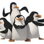 Пінгвін оновлення